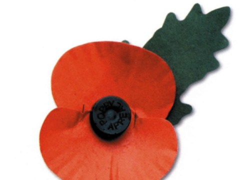 Government reminds schools and firms that wearing poppy with a pin is not a safety hazard