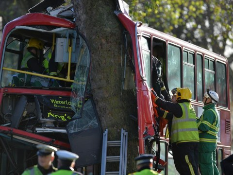 At least 20 injured, two critical, after south London bus crashes into tree