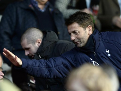 Tim Sherwood brings timely joy to suffering Tottenham fans after a miserable week with victory at Southampton