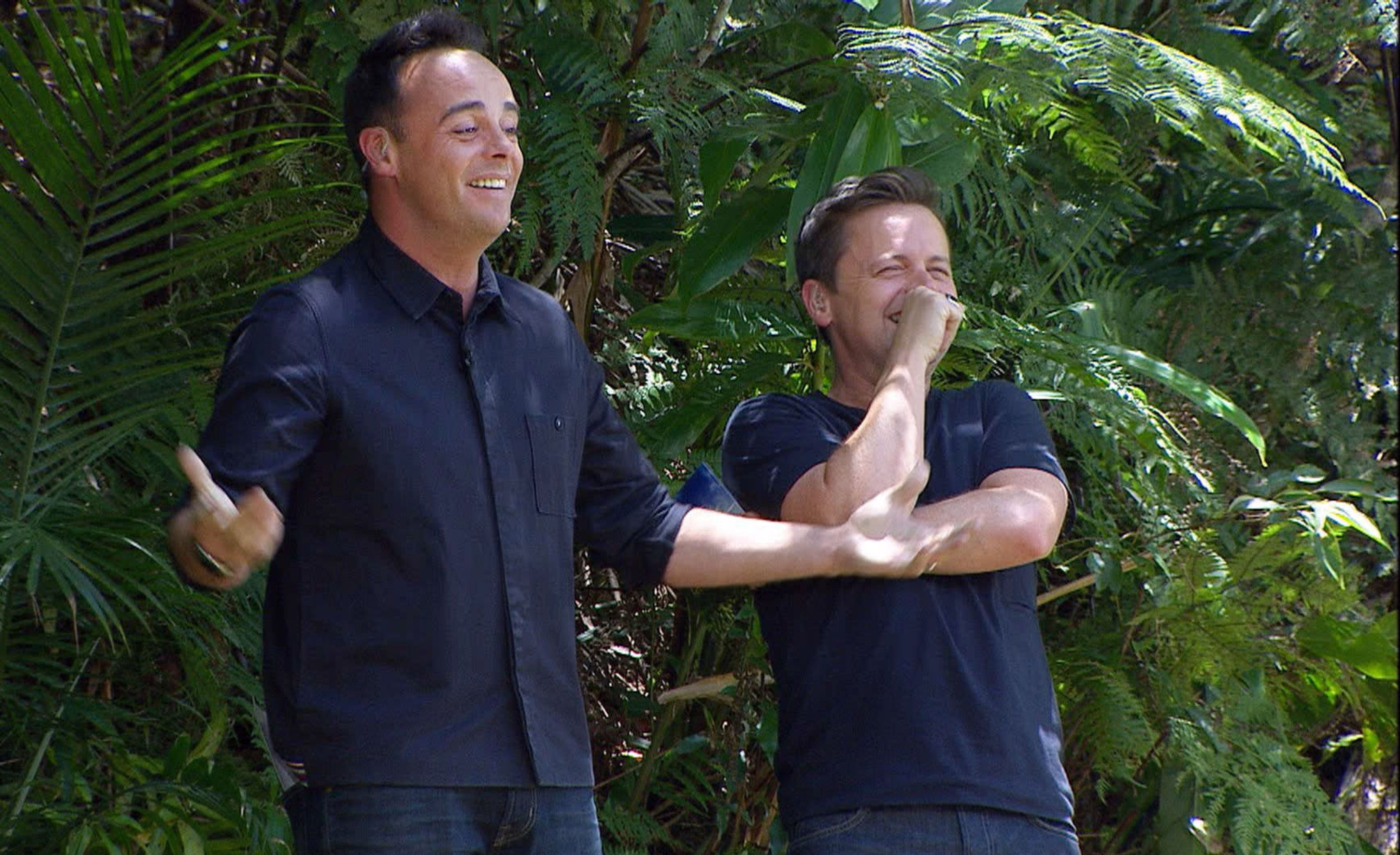 I'm A Celebrity 2013: Ant and Dec get hysterical as Steve Davis makes a fool of himself