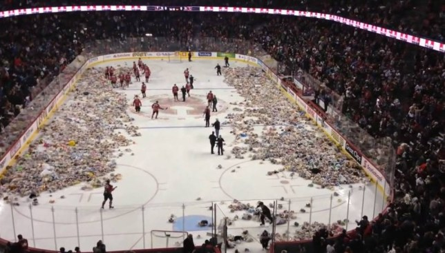 Teddy bears fill the ice rink at the Saddledome (Picture: YouTube)
