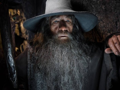 What happened when Ian McKellen bumped into Sesame Street's Gandalf puppet