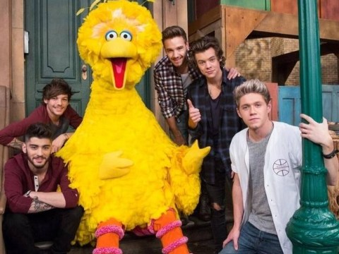 One Direction to flex their literacy skills as they join Big Bird and co. on Sesame Street