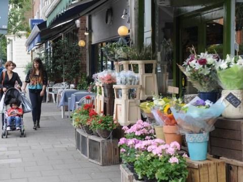 East Sheen, south London: a prosperous area where schools rule