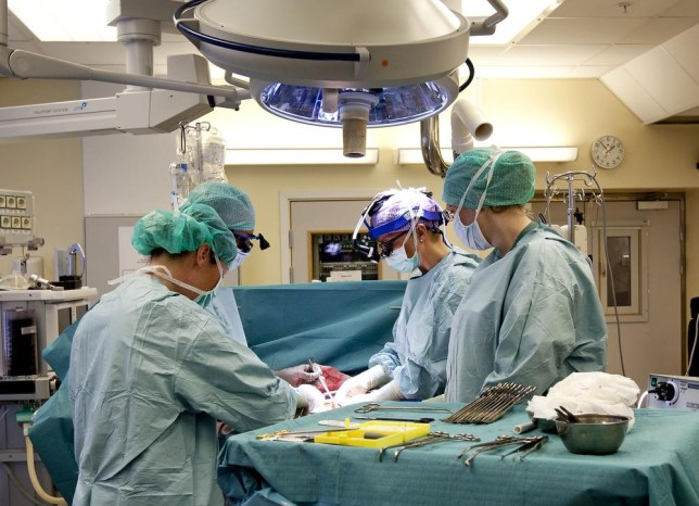 Pioneering: Surgeons at the University of Gothenburg practise before carrying out a womb transplant (Picture: AP)