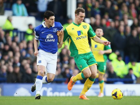 Gareth Barry shines as Everton's quality proves too much for struggling Norwich