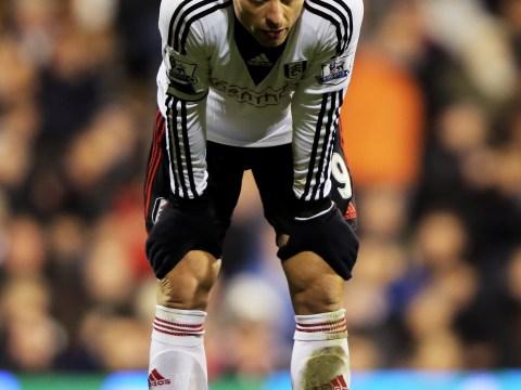 Tottenham make £1million offer to re-sign Fulham striker Dimitar Berbatov