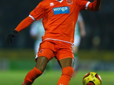 Forget Wilfried Zaha! Cardiff City should be targeting Swansea-bound Tom Ince