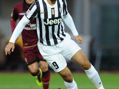 Mirko Vucinic and Fabio Quagliarella could leave Juventus to boost Tottenham's attack
