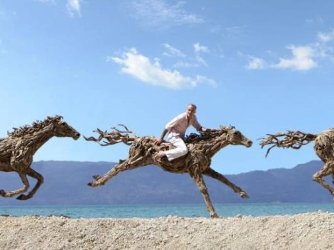 Thrills of glorious driftwood: Wild horses created from pieces of floating timber