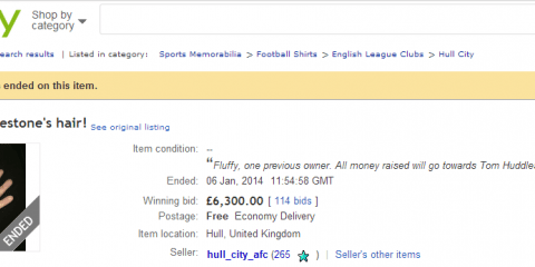 Mad! Hull City fan sells Tom Huddlestone's hair on eBay for £6,300