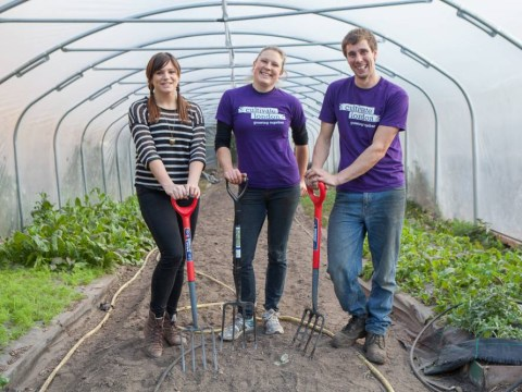 Urban farming: We've got the future sown up