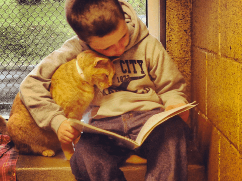 Children reading books to homeless cats might be the cutest thing ever