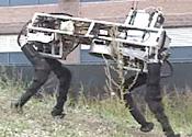 Robo dogs