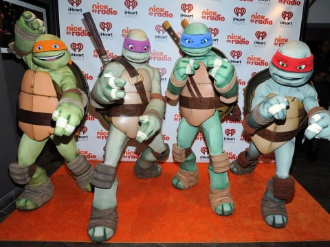 Baseball team to dress in Teenage Mutant Ninja Turtle uniforms this season