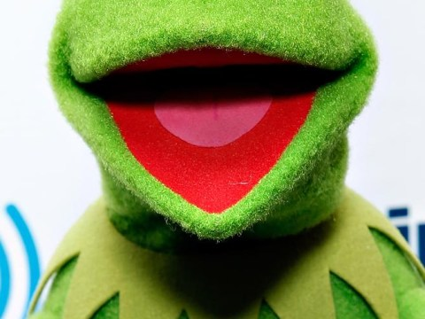 Kermit and Miss Piggy divided as frog urges Scots to say no to independence