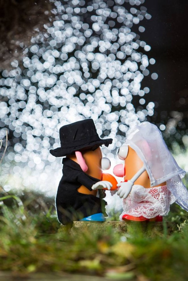 Mr and Mrs Potato Head wedding