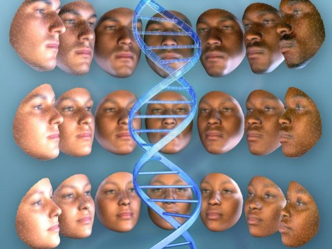 Genetic mug shots could be on the horizon after DNA breakthrough