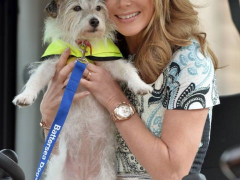 Pictures: Celebs turn out to support Battersea dogs home