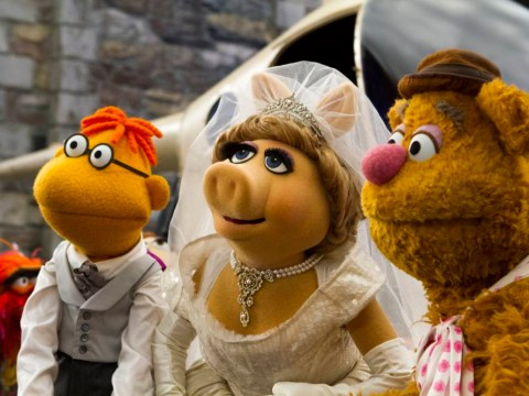 The Muppets Most Wanted: It's cameo crazy, with the likes of Lady Gaga, but it's furry fun