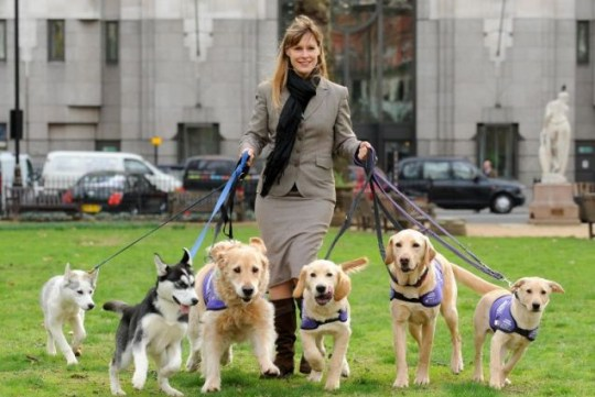 Sara Wilde of the Kennel Club, with friends, launches Crufts dog show at the Birmingham NEC