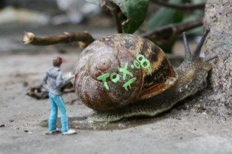 Graffiti snails London