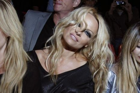 Pamela Anderson is hoping to become a UN goodwill ambassador