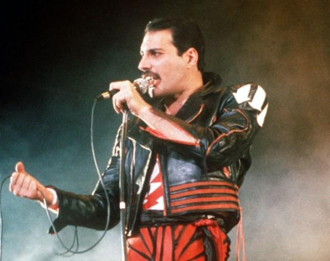 """ARCHIV: Singer Freddie Mercury of the rock group Queen, performs at a concert in Sydney (Foto von 1985). Mercury waere am 5. September 2011 65 Jahre alt geworden. Um diesen Anlass zu feiern und um Spenden fuer den Mercury Phoenix Trust zu sammeln, wird der Aufruf gestartet, einen Tag lang in die Rolle des verstorbenen Queen-Saengers zu schluepfen und damit die Aktion """"Freddie For A Day"""" zu unterstuetzen. (zu dapd-Text) Foto: Gill Allen/AP/dapd"""