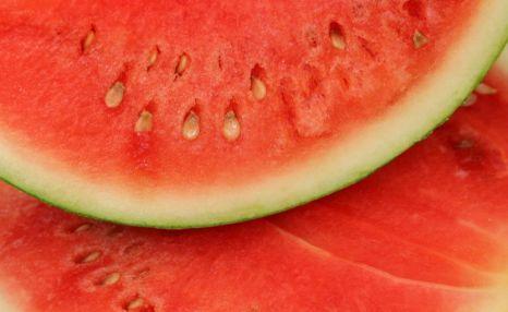 Watermelon, salmonella outbreak, Salmonella Newport