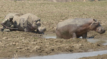 human hippo suit dr brady barr