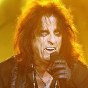 A disabled man attacked another fan at a concert by Alice Cooper (pictured)