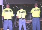 Security web