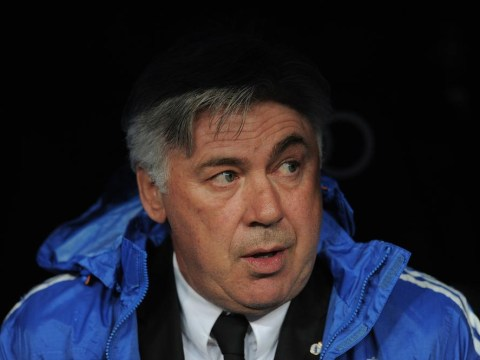 Carlo Ancelotti targeted by Tottenham as a potential replacement for Tim Sherwood