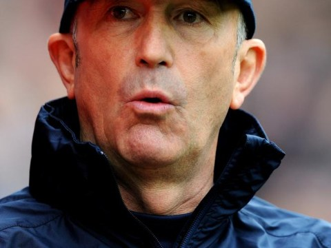 Tony Pulis and Jason Puncheon steer Crystal Palace clear of relegation scrap