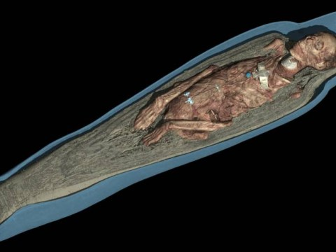 It's Gruesome-khamun: Brain-scooping spatula found in mummy's skull