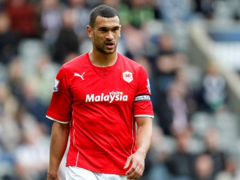 Steven Caulker and Fraizer Campbell could be two of the ten signings West Brom need