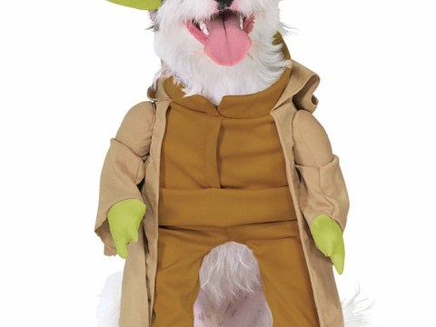 A Force to be reckoned with: Star Wars costumes for dogs will turn your pet to the bark side