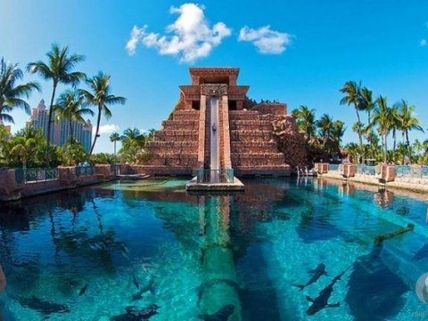 10 scary water slides around the world that are both terrifying and absolutely fricking amazing