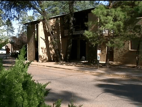 Three-year-old shoots baby brother dead after finding gun