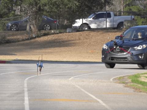 Meet the robot runner which can outpace Usain Bolt
