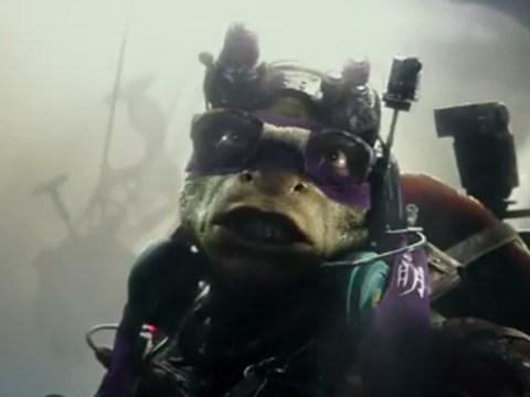 The new Teenage Mutant Ninja Turtles trailer has actual turtles in it