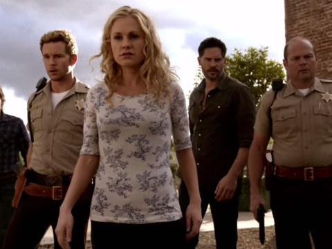 Blood, sex and, hopefully, Alexander Skarsgard: Why final season of True Blood could be most awesome yet