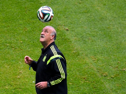 World Cup 2014: Vicente del Bosque relaxed ahead of Spain's clash with Holland as he shows off heading keepy-uppys