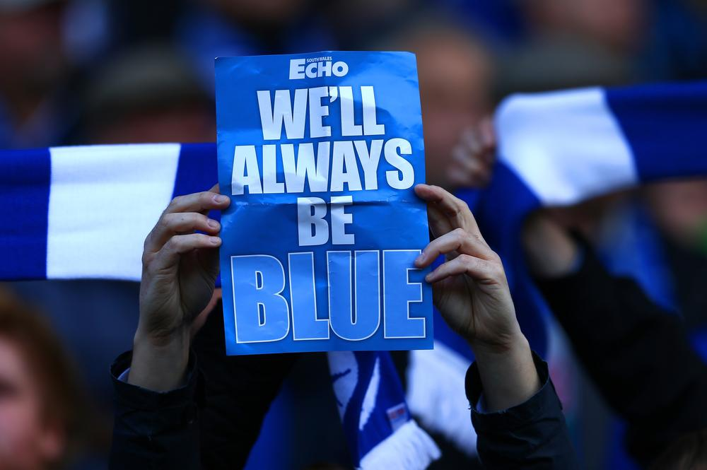 Cardiff City Supporters' Trust blue shirt is a brilliant idea