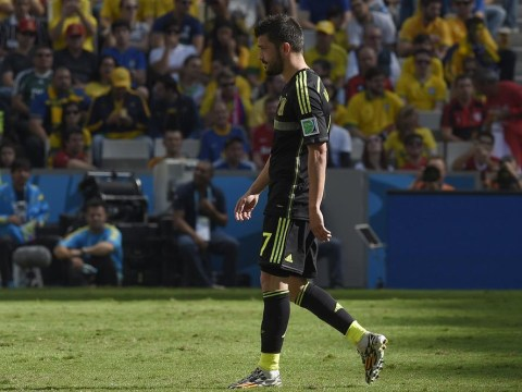 Vicente del Bosque completes disastrous World Cup for Spain by snubbing David Villa