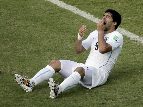 Liverpool's Luis Suarez offered escape route from his biting ban with Kosovan Superleague club Hajvalia