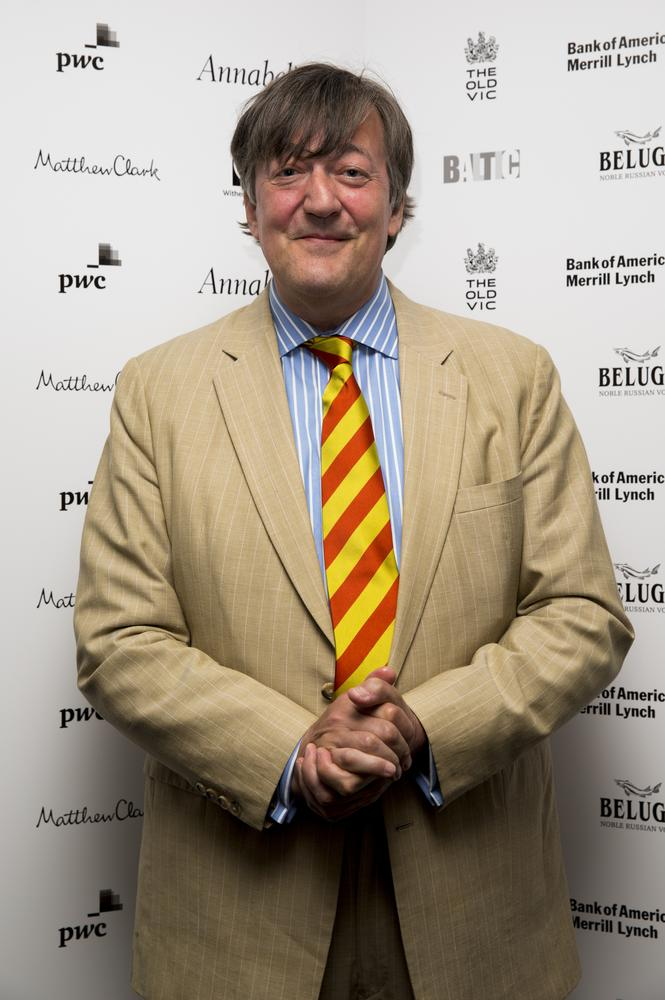 Stephen Fry is bookies' favourite to replace David Jason in the new Danger Mouse animated series