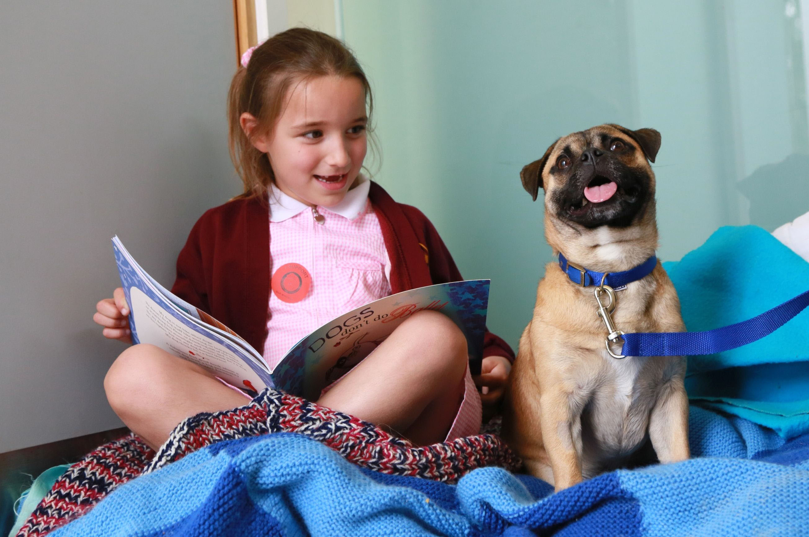 School children read to Battersea's dogs and cats
