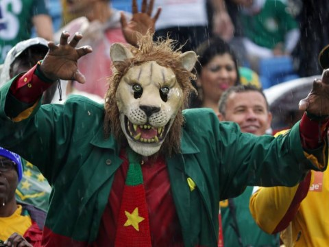 World Cup 2014: Mexico v Cameroon brings out some sensational fan costumes