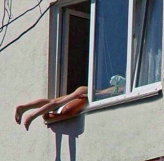Naked sunbather hanging out of window causes crash in Vienna, Austria